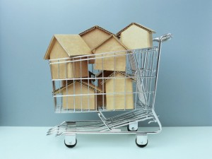 Cardboard Houses in Shopping Cart